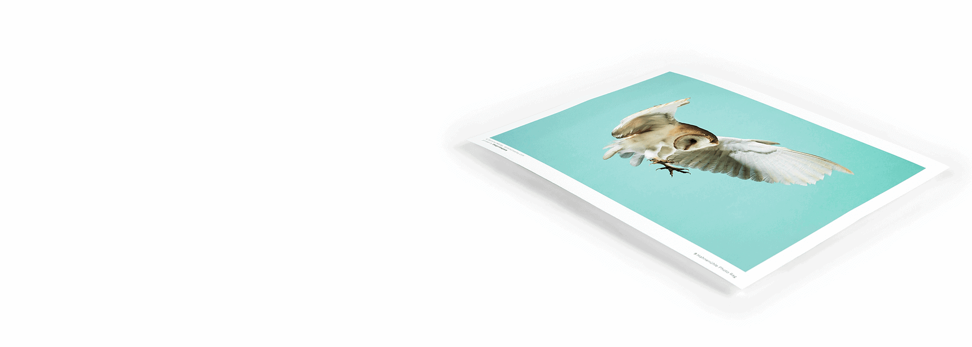 giclée printing service theprintspace