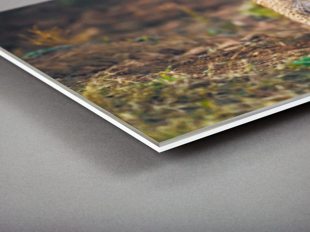 Cost giclee and efficient most latex printer